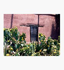 Mesilla Bouquet Photographic Print