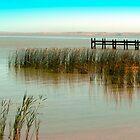 Jetty, Lake Meningie by Roz McQuillan