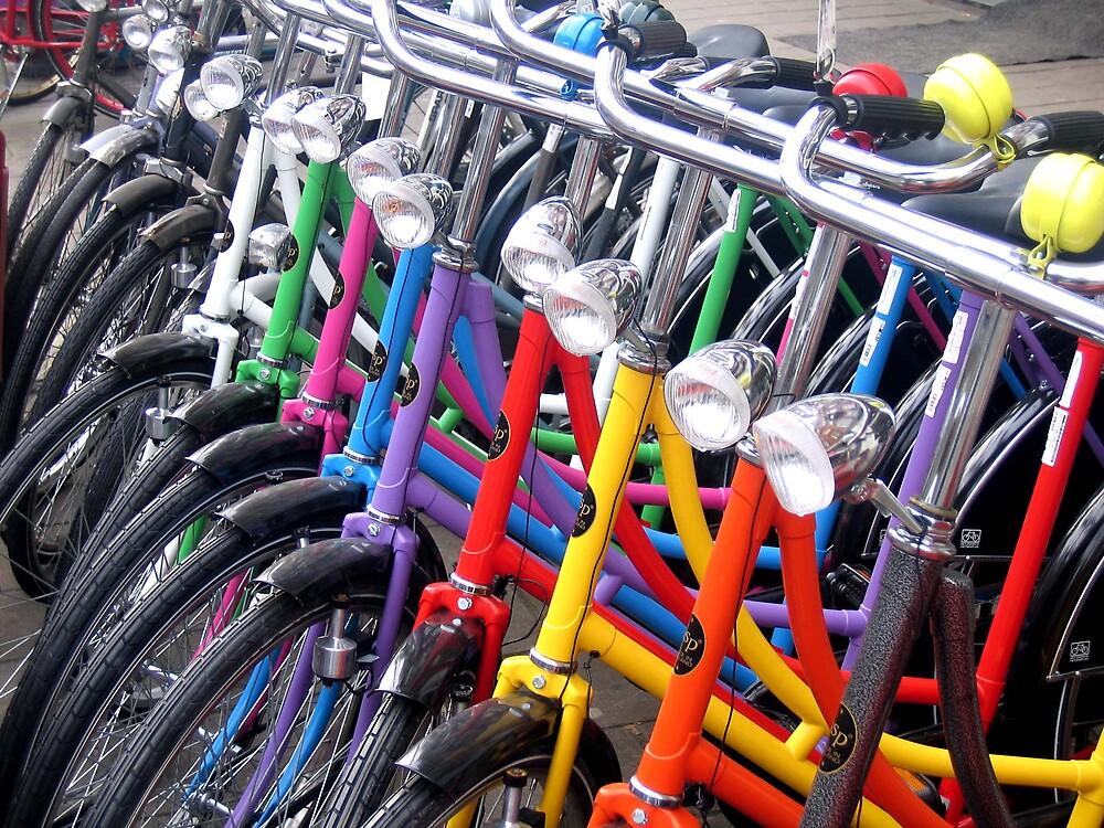 bikes by david stevenson