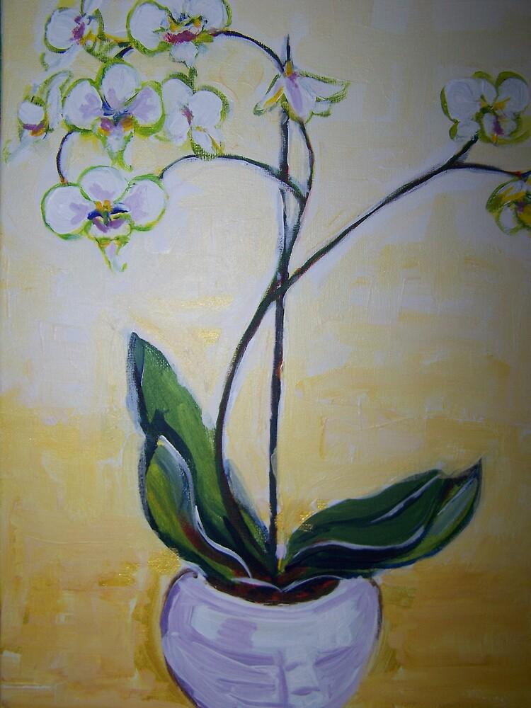 Orchid by Maya Sunrise