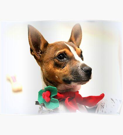 Weihnachten Kudlz Poster