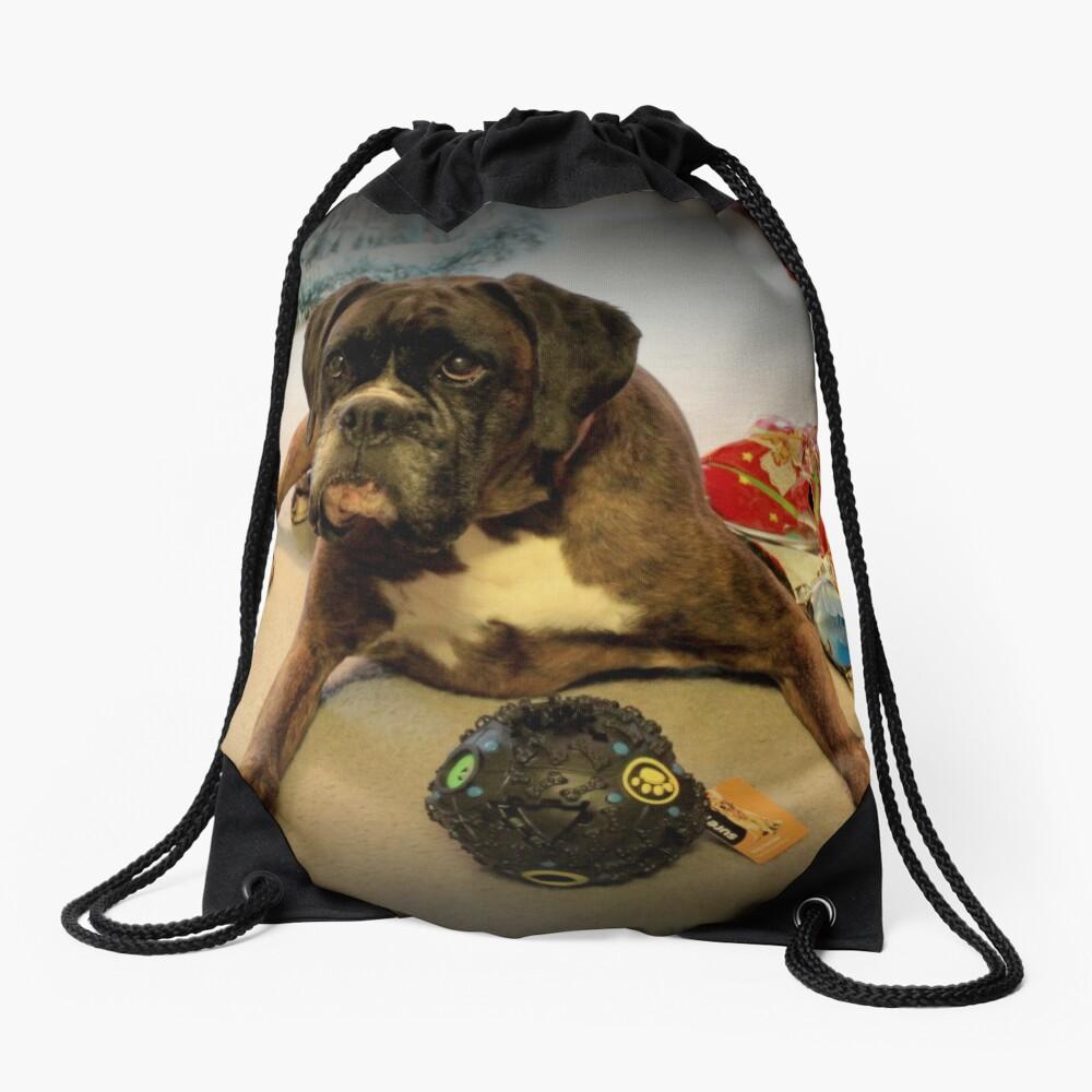 Ist das ein anderes Weihnachtsgeschenk für mich? - Boxer-Hunde-Reihe Turnbeutel