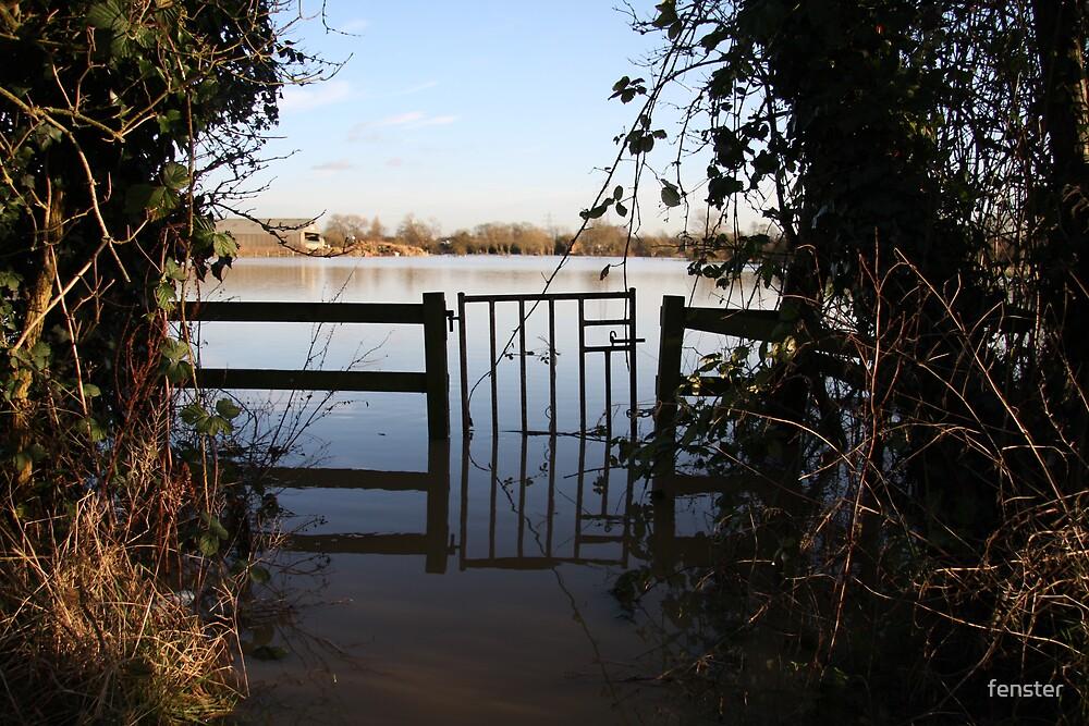 Winter Floods by fenster