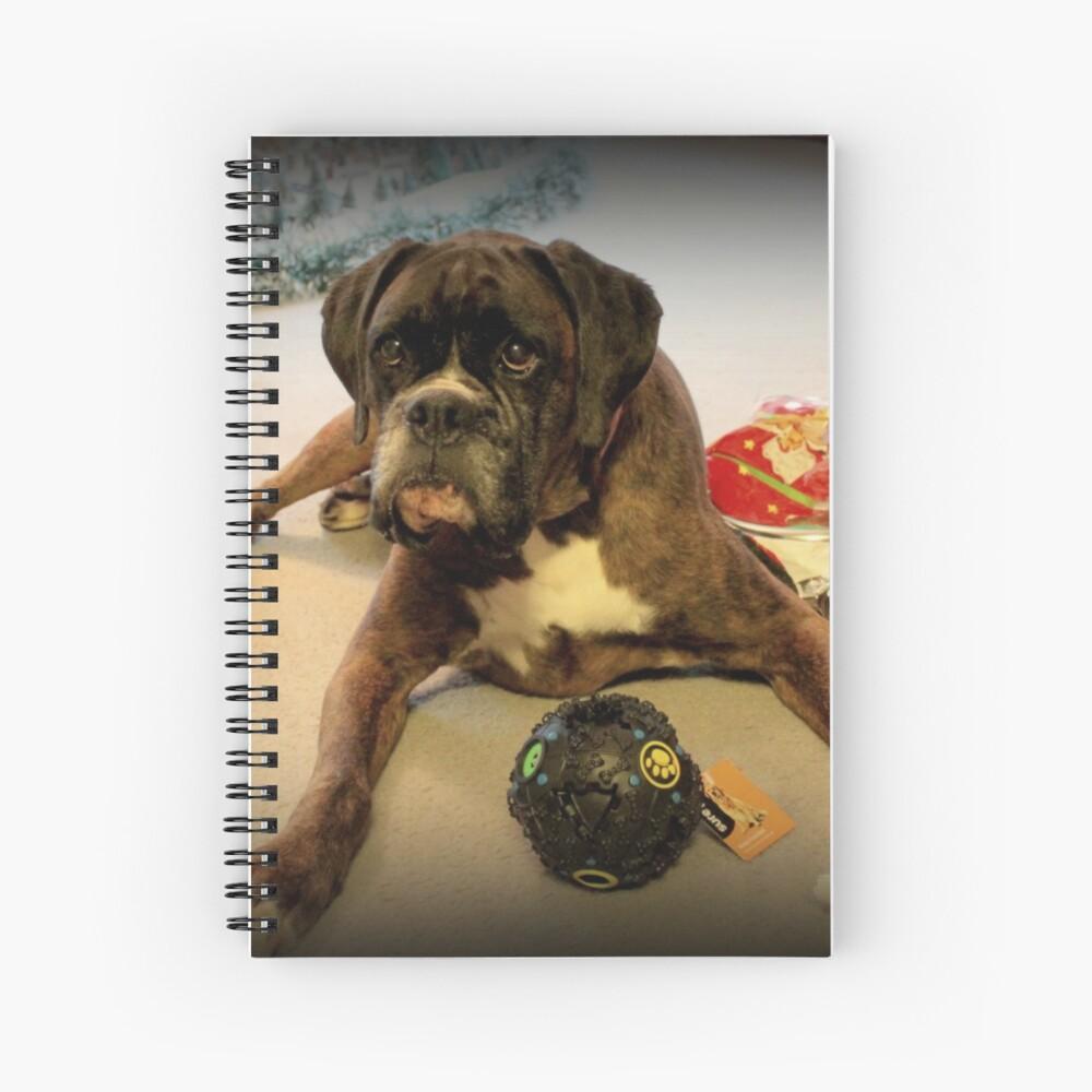 Ist das ein anderes Weihnachtsgeschenk für mich? - Boxer-Hunde-Reihe Spiralblock