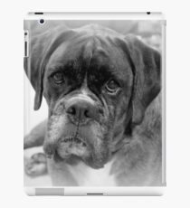 Contemplating My New Years Resolution ~ Boxer Dogs Series iPad Case/Skin