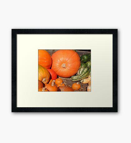 November's Bounty Framed Print