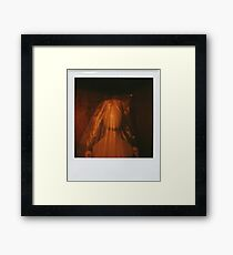 covered doll Framed Print