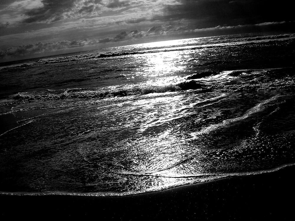 silver tide by SherryAnn