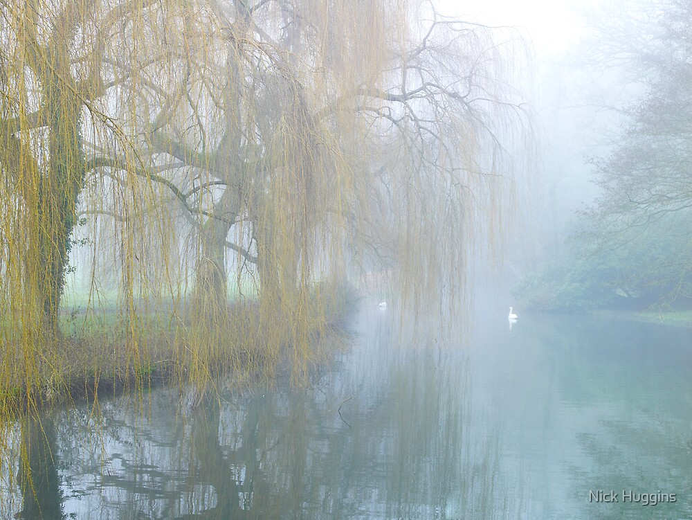Willow Dream by Nick Huggins