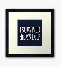 I Survived... Framed Print