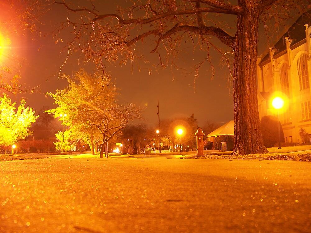 Night Walk by theEwing