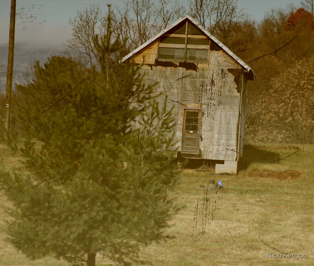In the country by Nicki Kenyon