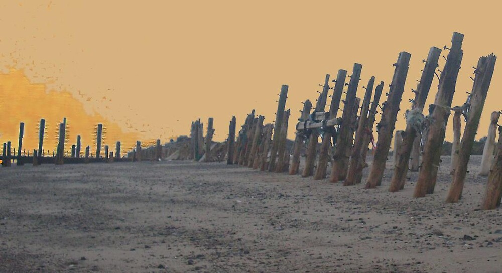 Sentinels at Spurn by lurchama