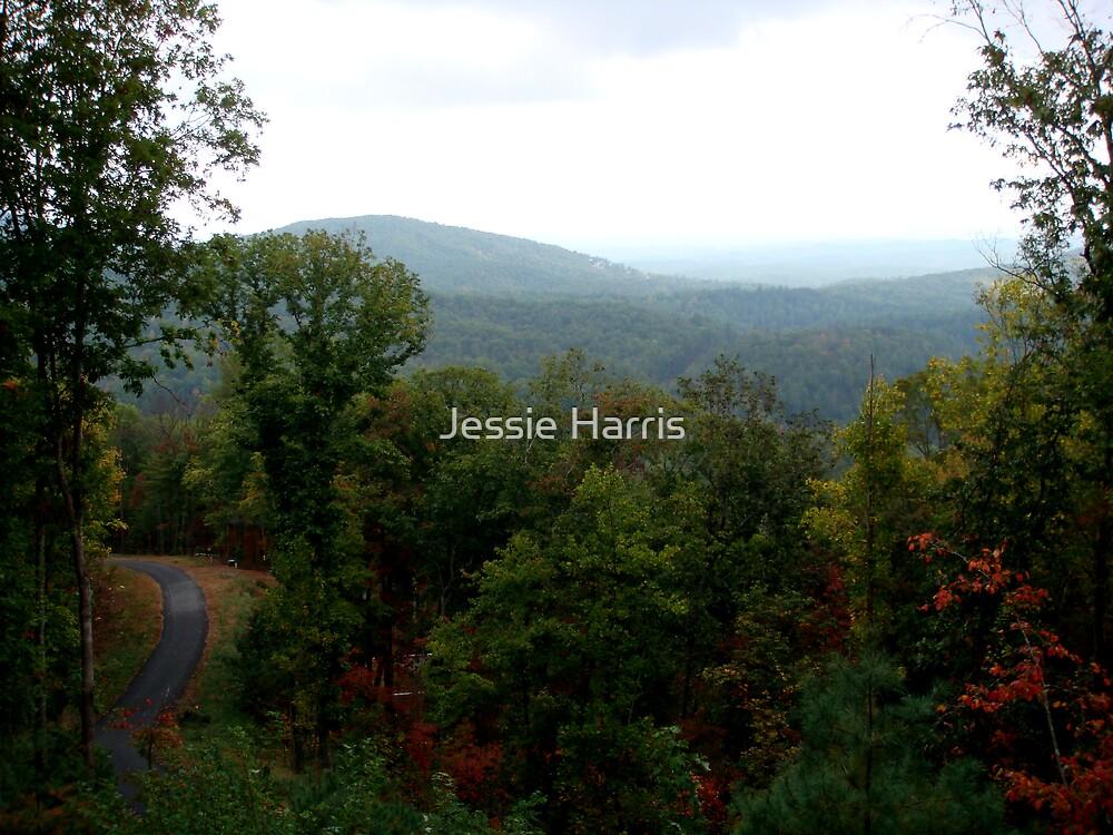 Roadway by Jessie Harris