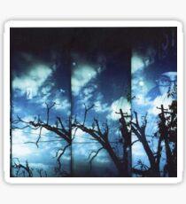 Holga Winter Sky Sticker