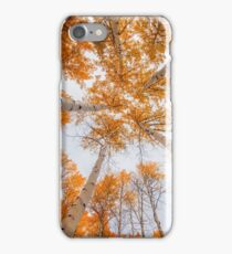 Surrounded by Autumn iPhone Case/Skin