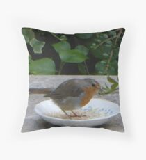 why not sit in your food instead of eat it? Throw Pillow