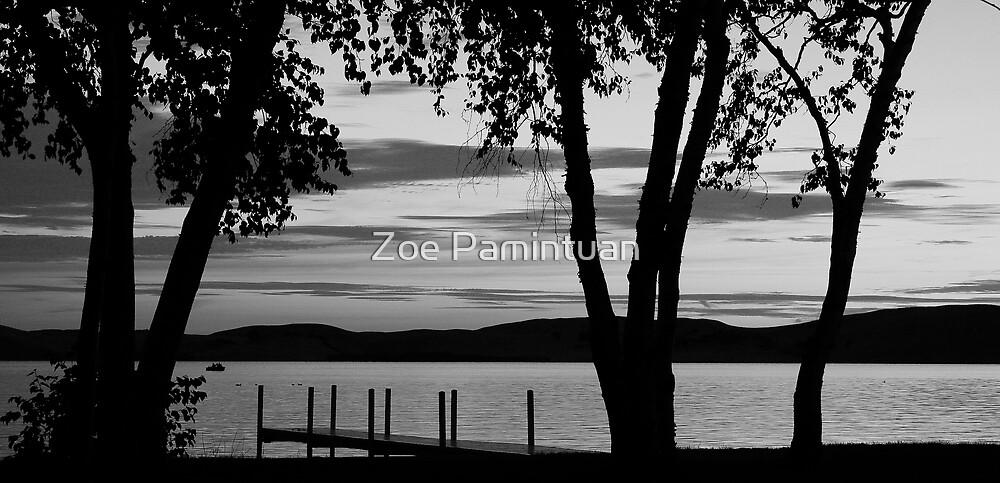 Silver Lake #1 by Zoe Pamintuan