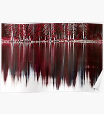 Candy Cane Forest Poster