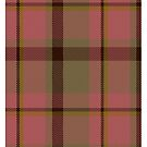 Manhattan Ethnic Tartan  by Detnecs2013