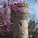 Pink Bud Tower by Jeri Garner