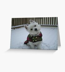 Winter Winnie Greeting Card