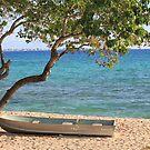 Boat On The Sand by Jeri Garner