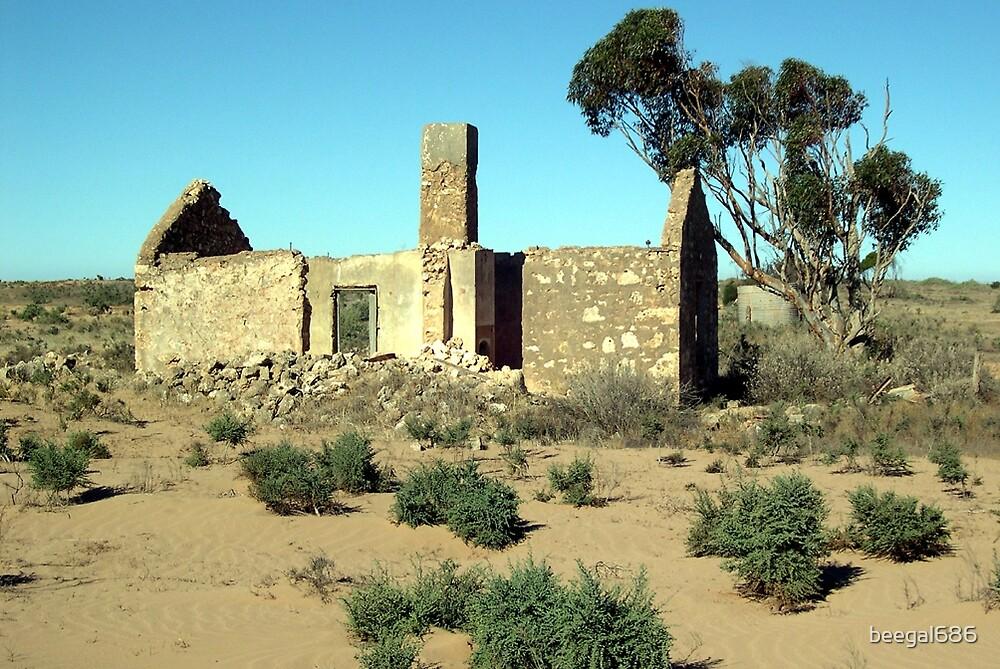 Mackenzie's Ruin by beegal686