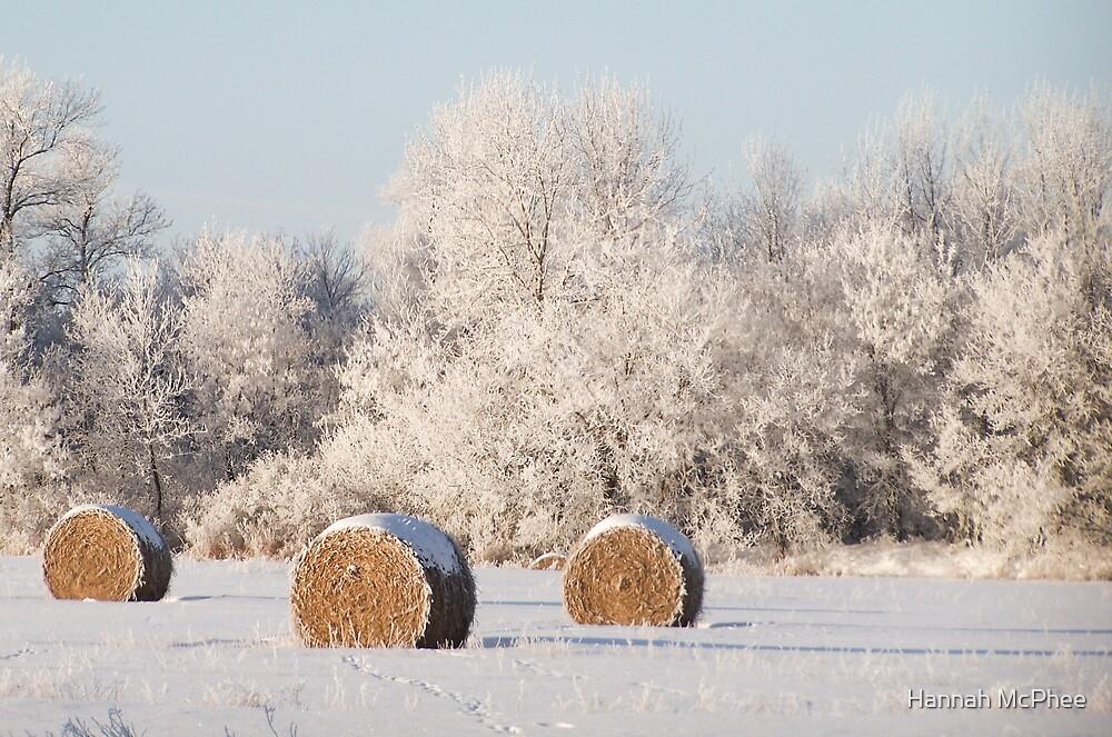 Prairie Horefrost by Hannah McPhee