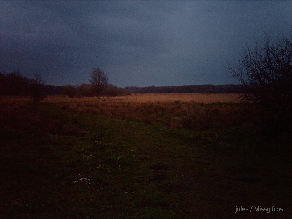 The fen at dusk by jules / Missy frost