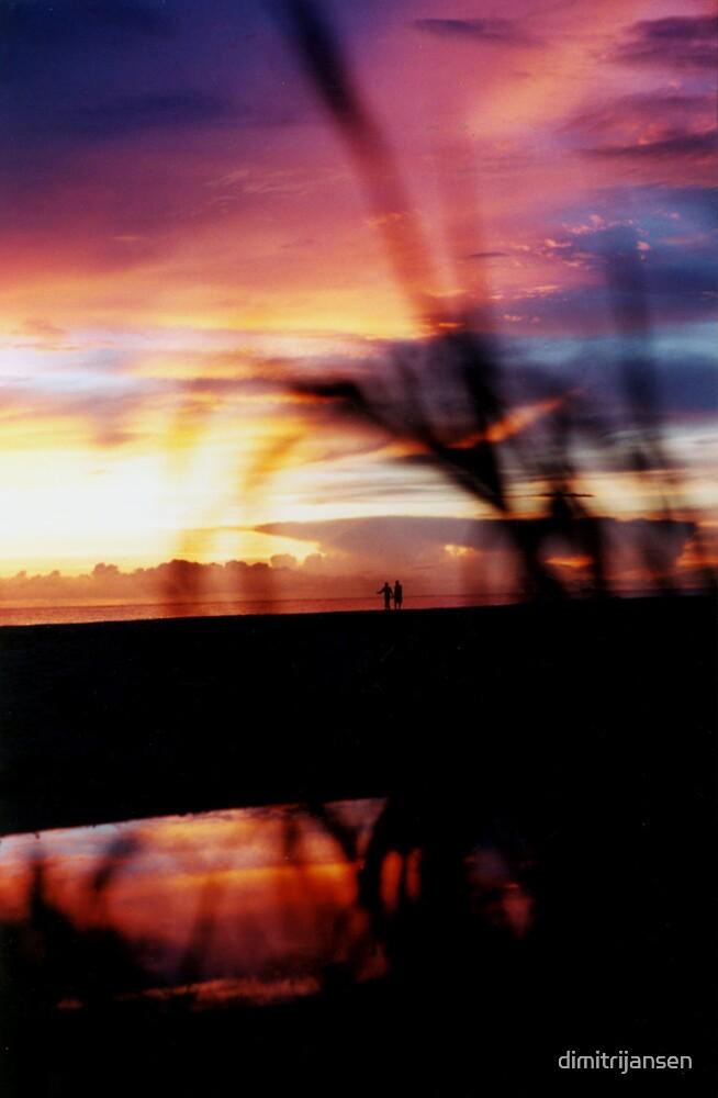Walking Sunset by dimitrijansen