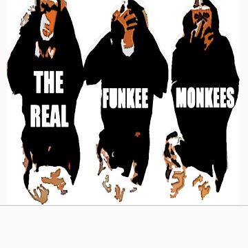 Funkee Monkees by davidN