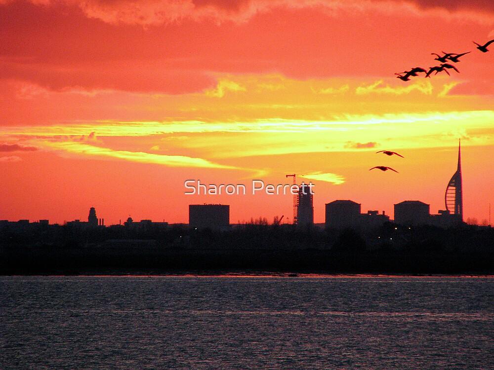 Sunset 4 12-12-07 - for Michael by Sharon Perrett