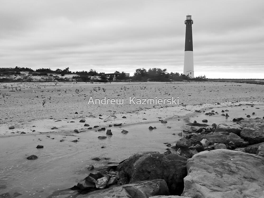 Barnagat Lighthouse B&W by andykazie