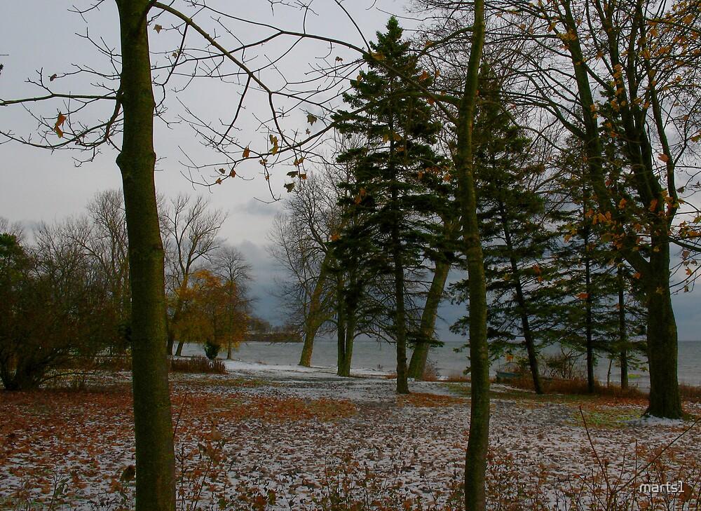 Winter at the Lake by marts1