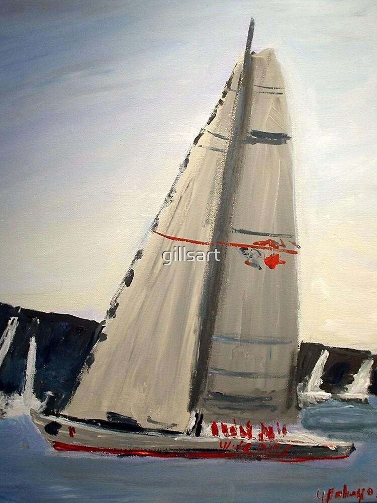 WILD OATS winner of the Sydney to Hobart Yacht race 2008 by gillsart