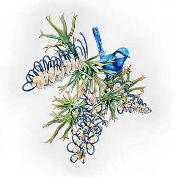 Grevillea apiciloba & Splendid Fairy Wren by MCColyer