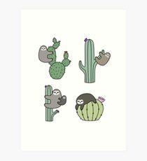 Lámina artística Cactus perezosos