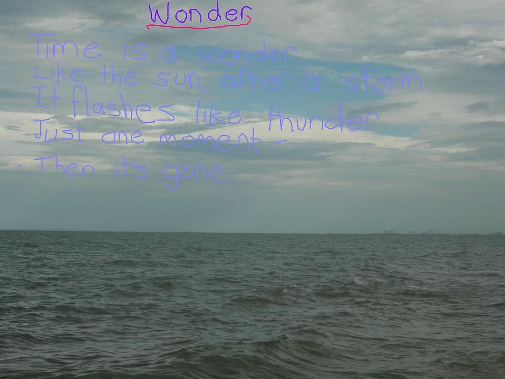 Wonder by Melissa Park