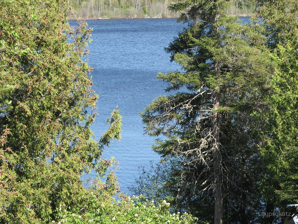 Lake at the Cottage by gypsykatz