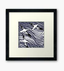 Endangered Species Wandering Albatross Framed Print