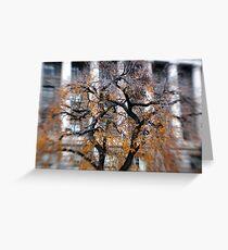 DC Tree Greeting Card