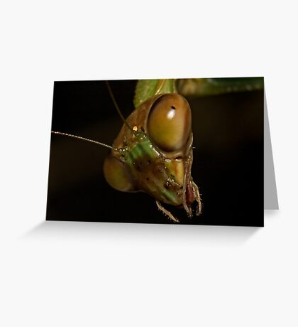 Mantis Head Greeting Card