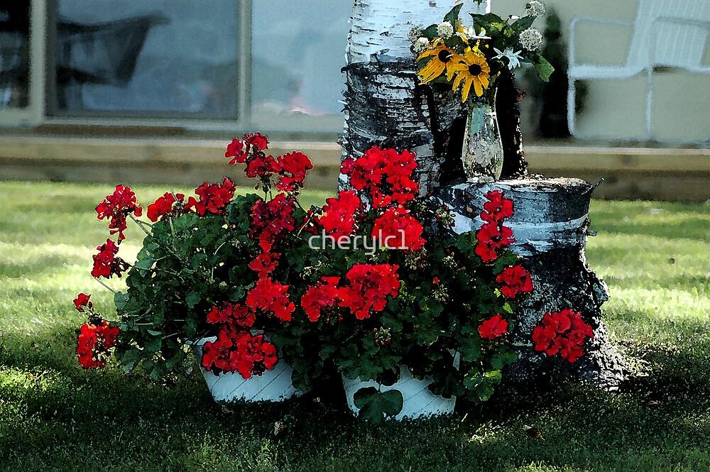 Cottage geraniums by cherylc1