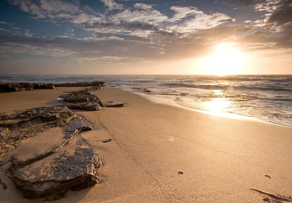 Turimetta Beach Sunrise by Daniel  Speranza