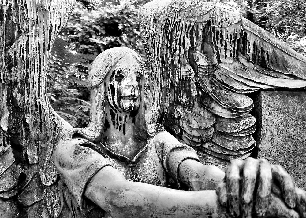 Why The Tears Dear Angel by Ganz