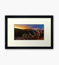 0389 Mt Hotham Brush Framed Print