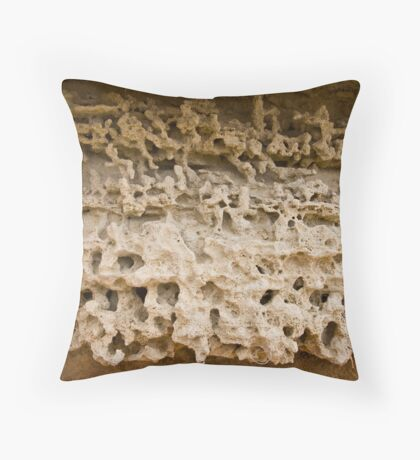 """Sedimentary, my Dear Watson"" Throw Pillow"