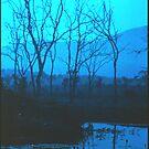 Ross River Dam by Marina Hurley