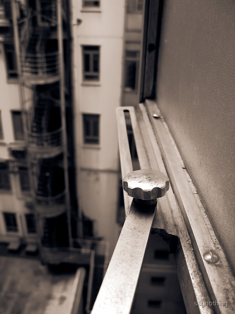 Scene from a window 2 by saynothing